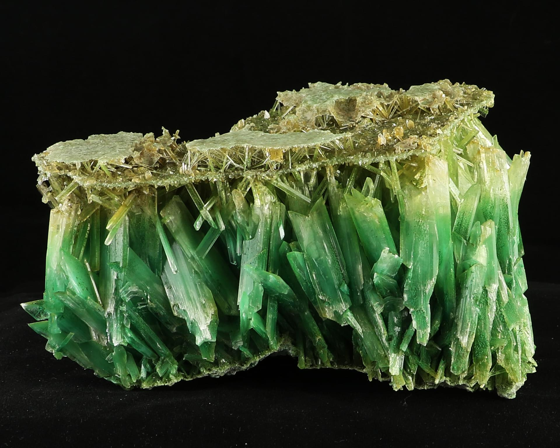 Cabinet size sharp gypsum crystals deep green color lubin for Gypsum colour