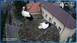 http://images76.fotosik.pl/465/7bf02d419e17a9cam.jpg
