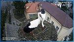 http://images76.fotosik.pl/465/fa3dda67565b8d62m.jpg