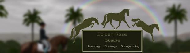 """Equestrian Centre """"Silver Ambassadors"""" - Страница 28 Bb100073d1bbd9a8gen"""