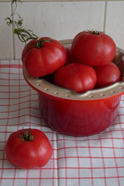 adios pomidory...